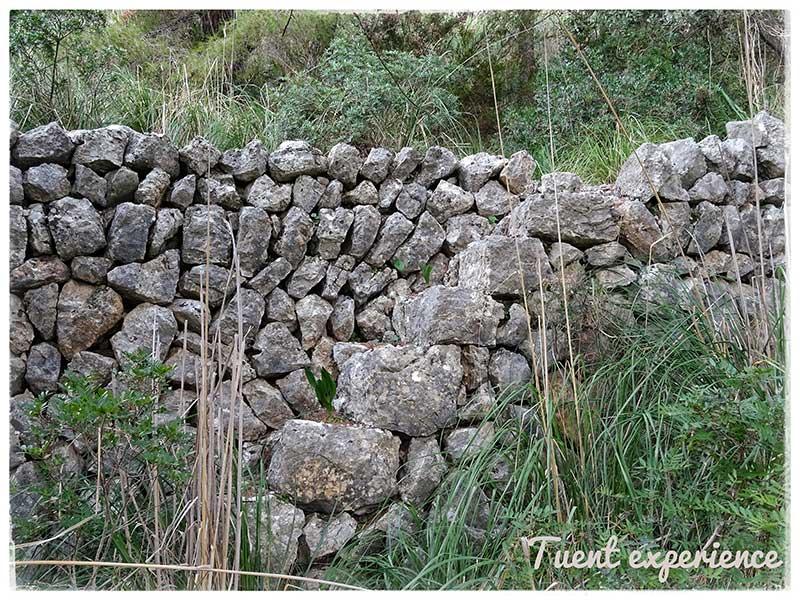 ruta-de-la-pedra-en-sec-1