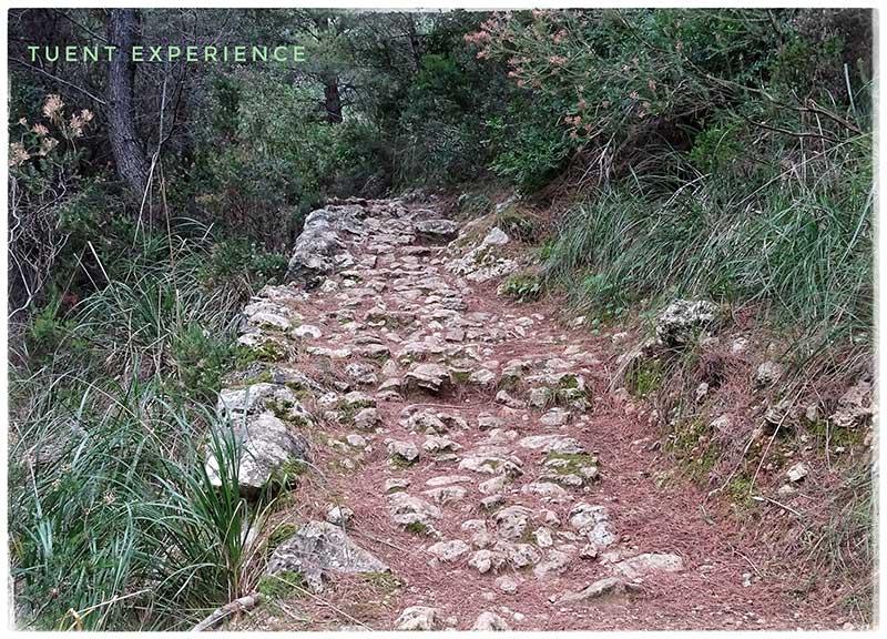 ruta-de-la-pedra-en-sec-2